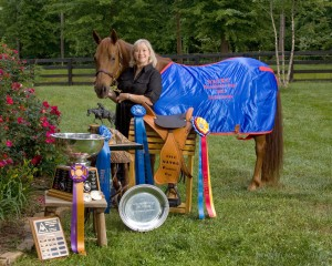Missouri Fox Trotters continue to make their mark in NATRC.  In 2012, Tammy Lineback and her Missouri Fox Trotter Susie's Stardust (above) won the prestigious NATRC President's Cup.  Susie's Stardust is just one Missouri Fox Trotter that has been honored with this award.