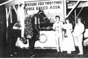 The 1987 Three Year Old Futurity Champion is Missouri's Bobbie Sue, a sorrel mare out of Missouri Traveler E., by Zane Grey and Rox Ann by Mack K's Yankee owned by Linda Juette of Quincy, Illinois and ridden by Geno Middleton of Nixa, Missouri.